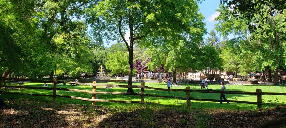free-things-to-do-at-howarth-park-santa-rosa-sonoma-california