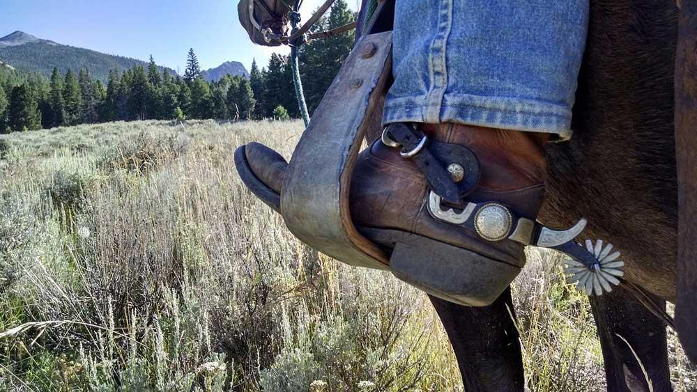 horseback-riding-in-sonoma-county