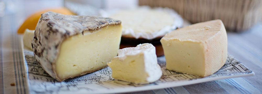 learn-about-cheese-tasting-in-sonoma-county
