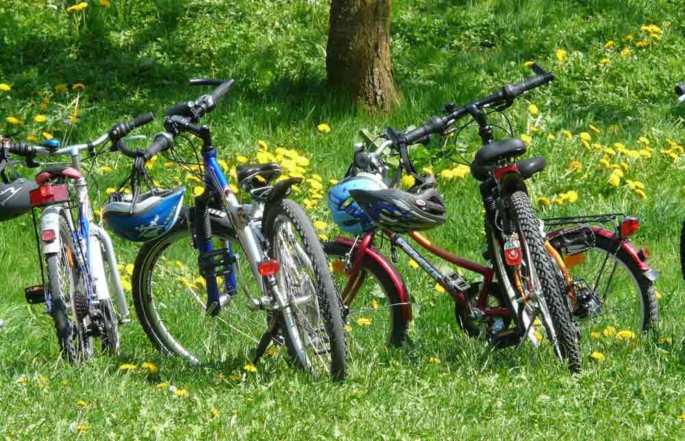 sonoma-city-biking